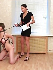 Heartless harnessed training of a juggy sports bitch